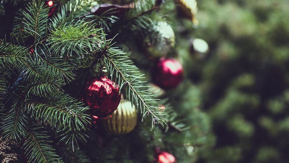 Jul på Södra Berget
