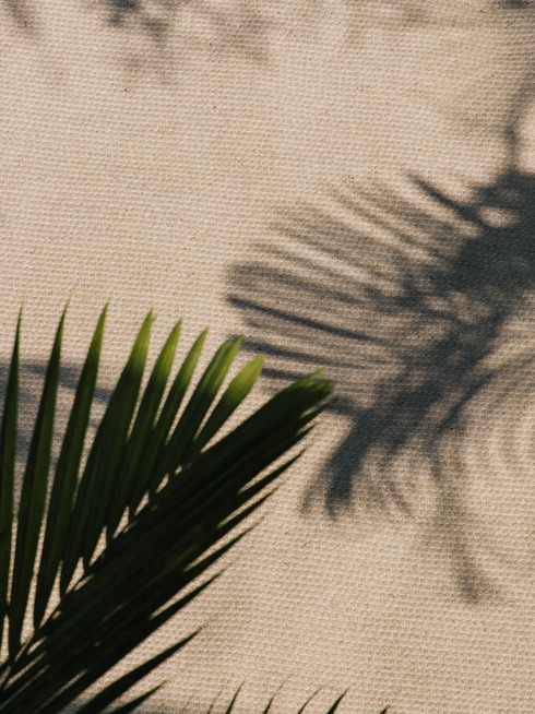 Minimalist outdoor inspiration Bali with palm tree and natural fiber sustainable eco jute rug