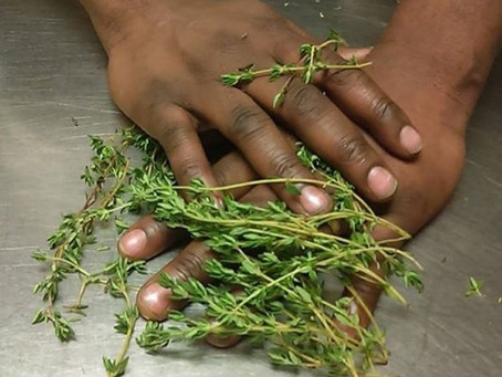 When you get a little Thyme on your hands, Come check out our website.
