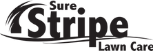 Sure Stripe Black Logo (1).png
