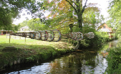 Eel traps from the bank