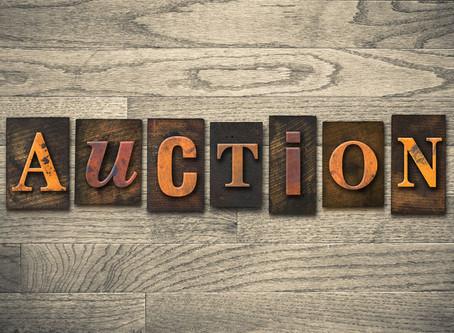 The WPCA Silent Auction has begun!