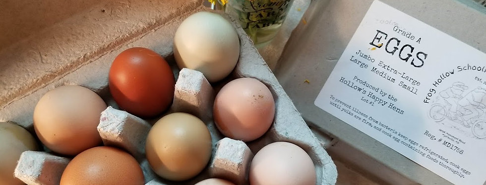 Dozen Naturally Colored Chicken Eggs