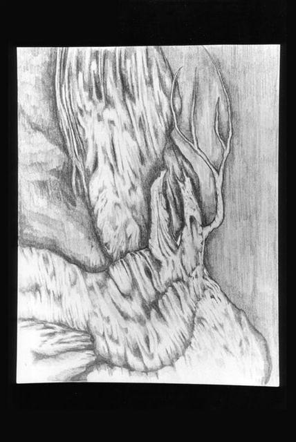 drawings 97