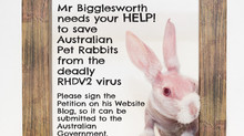 Please sign this Petition to get a vaccine for our Pet Rabbits in Australia