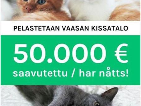 Operaatio pelastetaan Vaasan kissatalo & Fixailu-päivä kissatalolla 3/2018