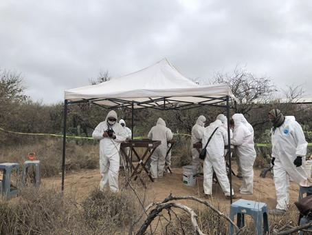 En tres años se han encontrado 40 fosas con restos humanos en SLP