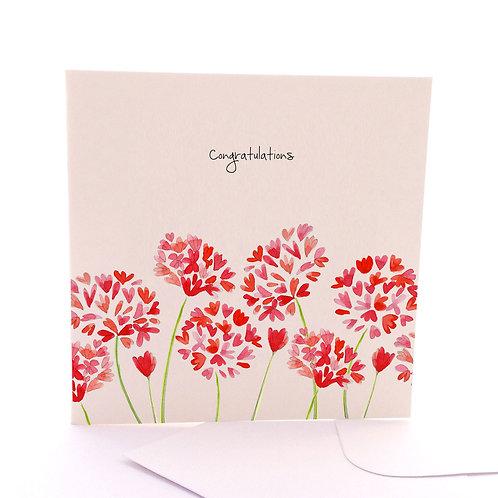 Congrats Blooms