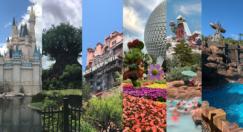 Disney Summer One World
