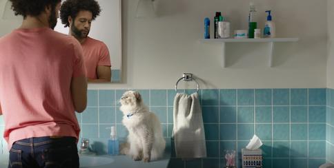 commercial-highmarkcats-2020-bathroom4.P