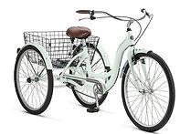 Tricycle Rental