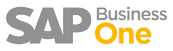 bwl SAP Business One