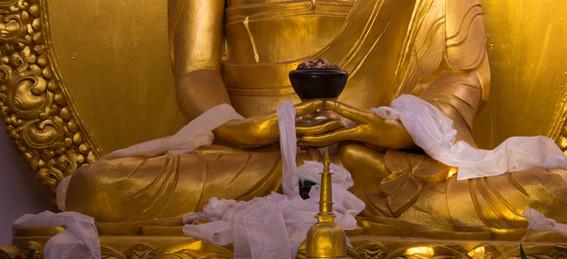 buddha hands.jpg