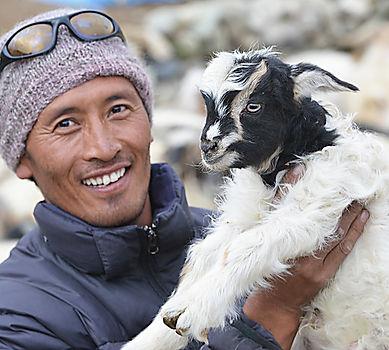 stobgais goat.jpg