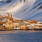 whaling station.jpg