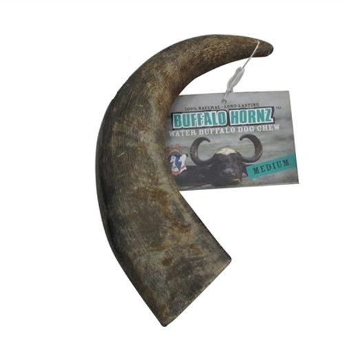 Medium size Buffalo Horn