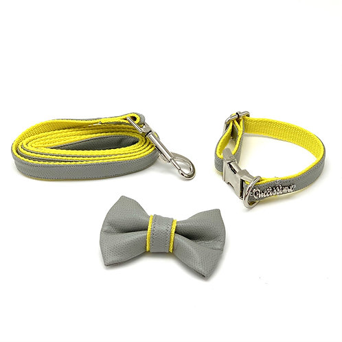 Gray & yellow leather leash