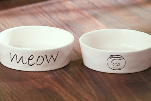 Cat bowl set