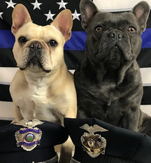 Law Enforcement Memorial Photo Shoot