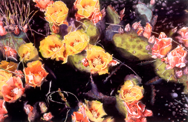 Prickly Pear Cactus Flowers II