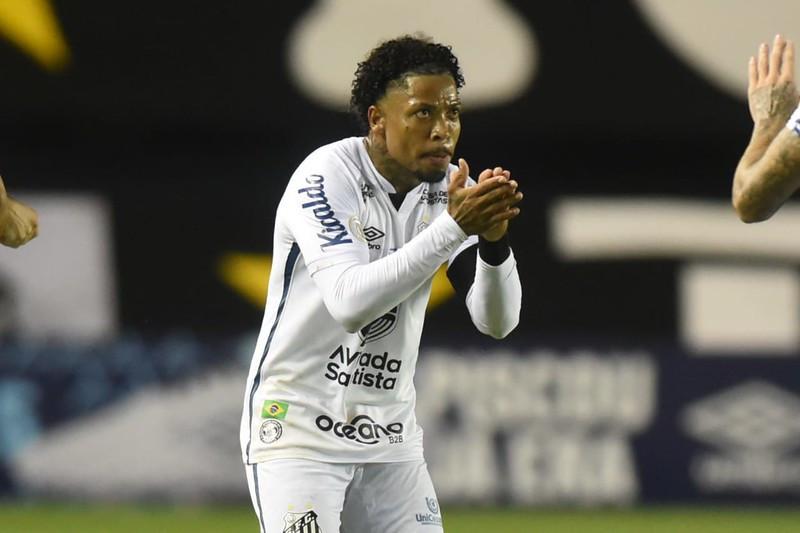 Fim de um primeiro turno sem sustos para o Santos FC
