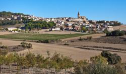 Discatillo, Navarra