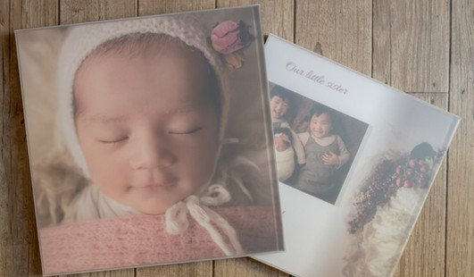 Album mount 裏表紙/半透明ケース付