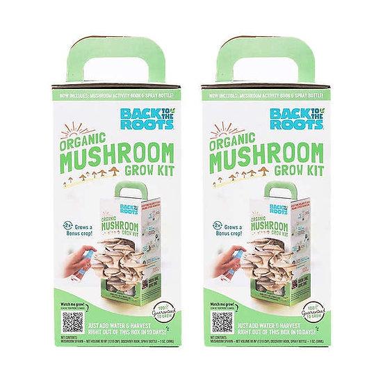 Organic Mushroom Grow Kit, 2-pack