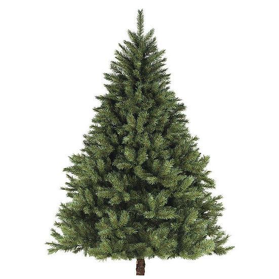6'-7' Fresh Cut Noble Fir Christmas Tree