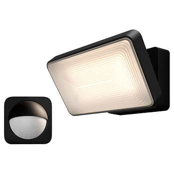 Philips Hue Discover Outdoor White & Color Smart Floodlight plus Motion Sensor