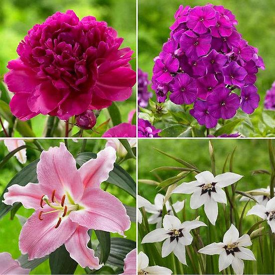 Fragrant Flower Garden, 58 Bulbs