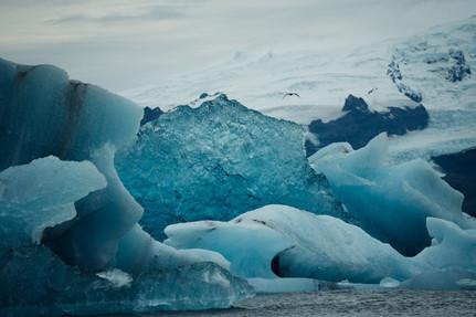 ICE - 195.jpg
