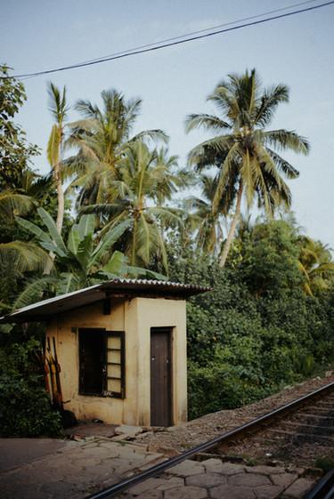 Indien - 46.jpg