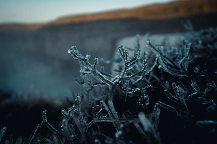 ICE - 131.jpg