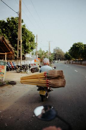 Indien - 43.jpg