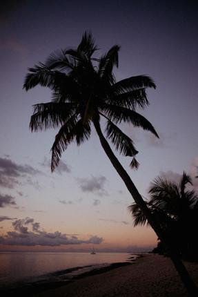 Mauritius - 8.jpg