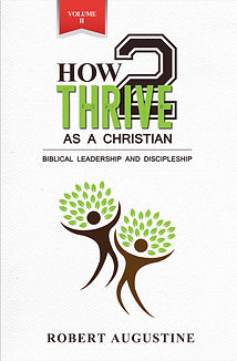 How2Thrive For Christian Vol 2.jpg