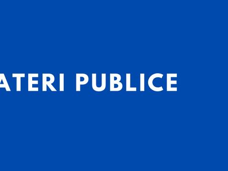"""Dezbateri publice """"Cu privire la aprobarea Regulamentului privind autorizarea plasării publicității"""