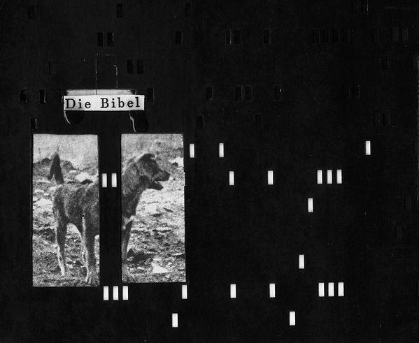 die-bibel, 2015_LUNACARGO-CHERNOFF