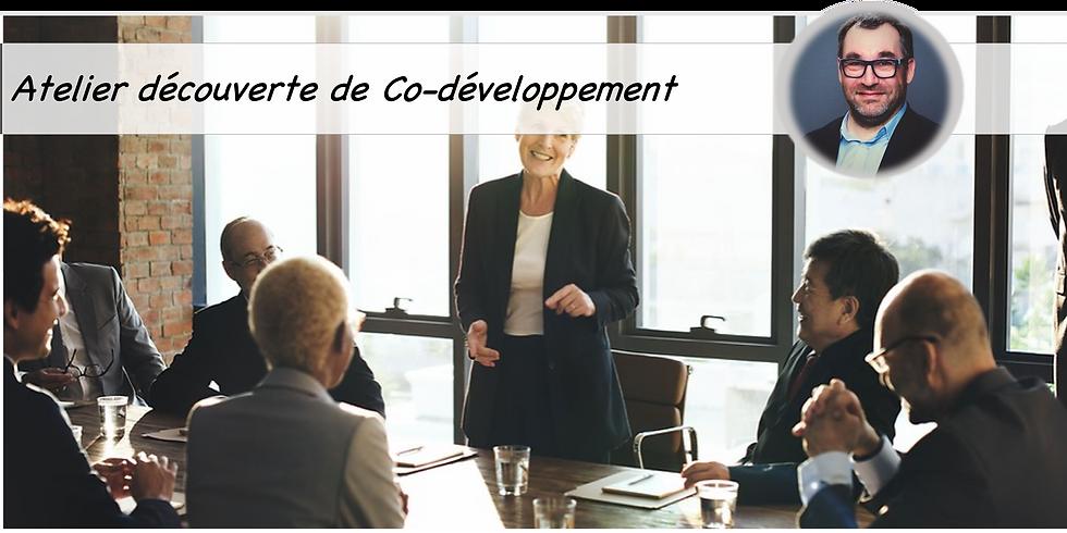 Atelier pratique co-développement TAB France