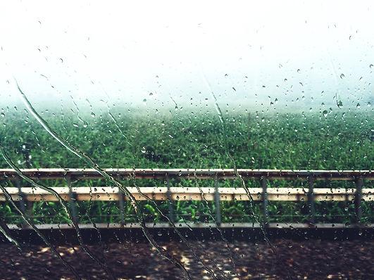 rain-886721.jpg
