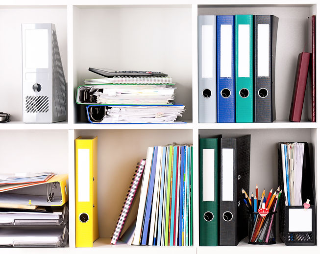 File folders, standing on the shelves at