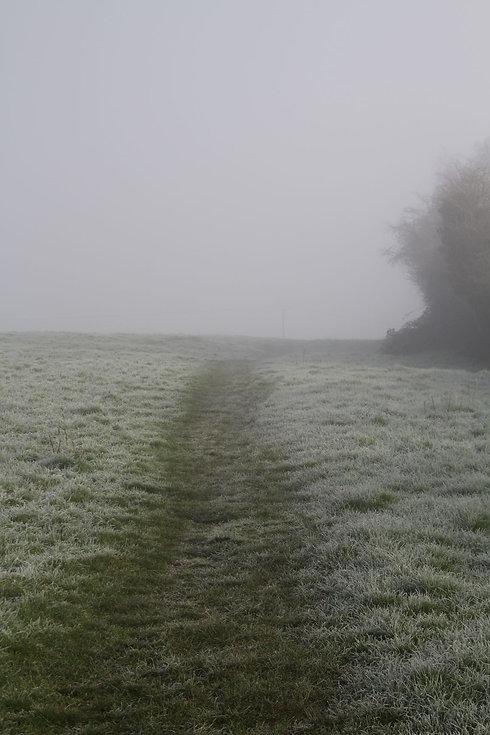 frost88.JPG