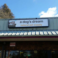 a dogs dream .jpg