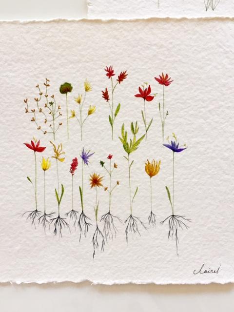 Fleurs en racines