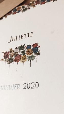 """""""Juliette"""""""