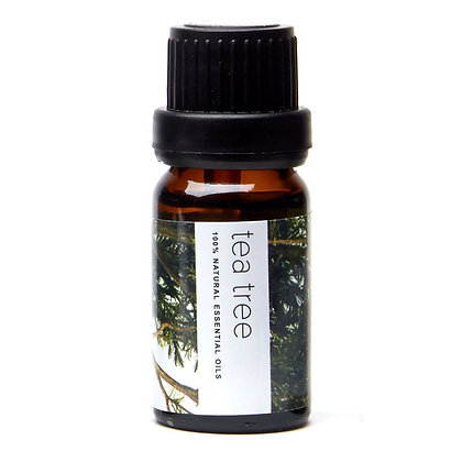 Pure Aroma Essential Oil - Tea Tree
