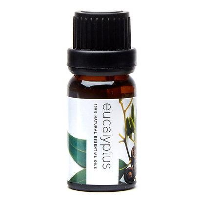 Pure Aroma Essential Oil - Eucalyptus