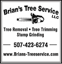 brian's tree service.PNG