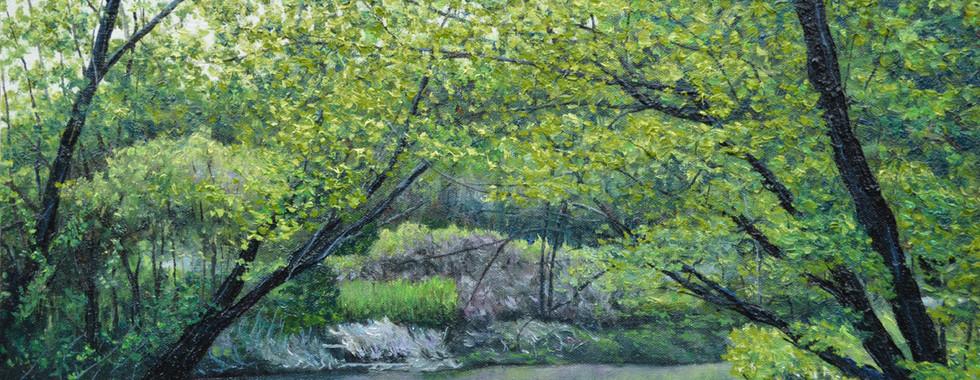 Monocacy Creek (Summer)